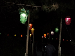 Lanterns light the stone pathway